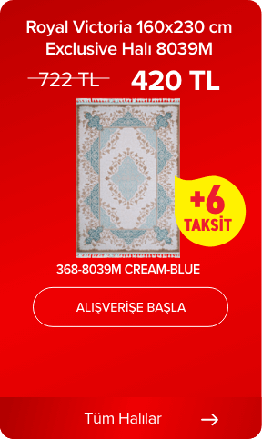 Royal Victoria 160x230 cm Exclusive Halı 8039M 368-8039M CREAM-BLUE